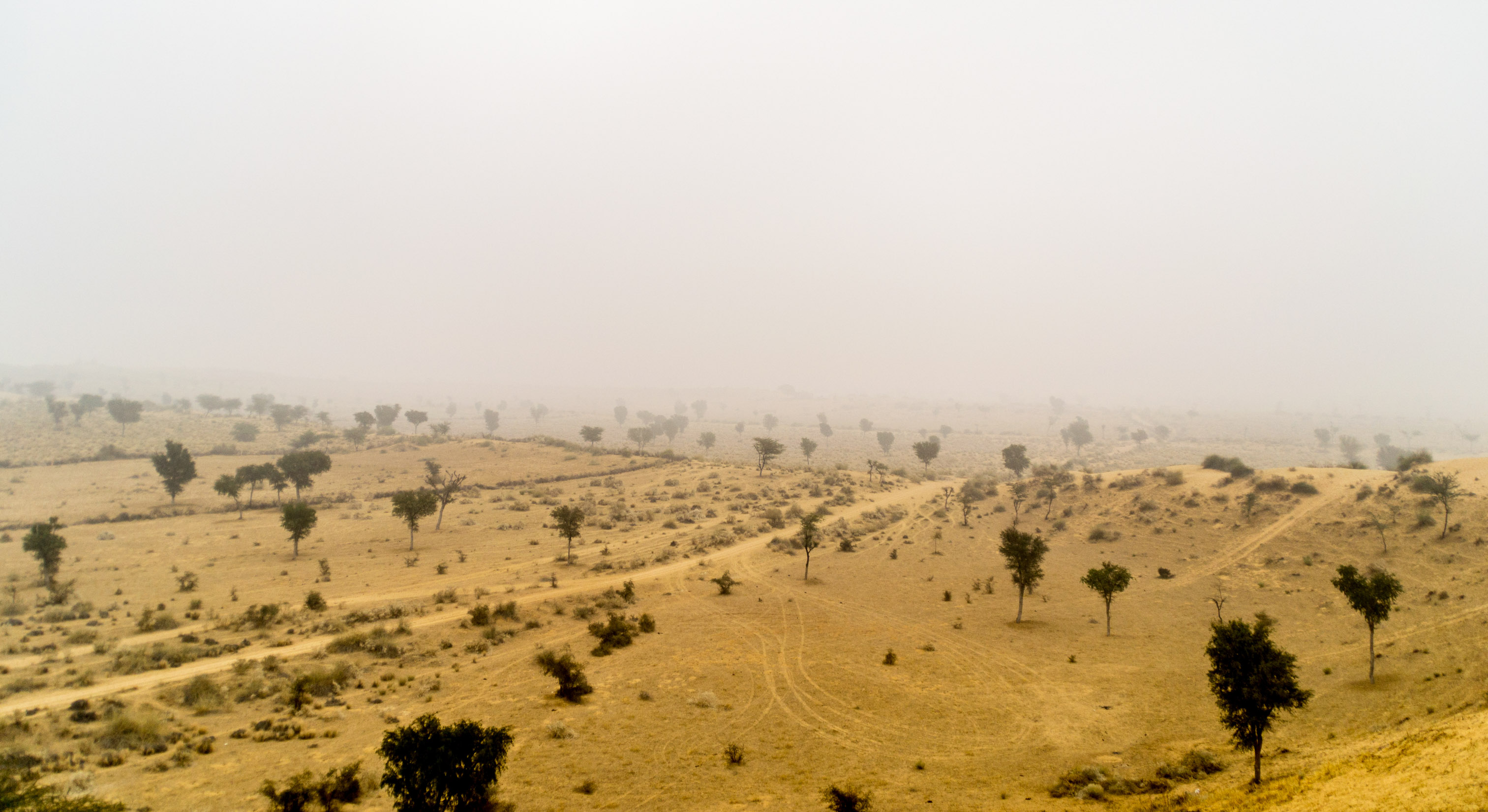 Barren Deserts enriched by Colorful People