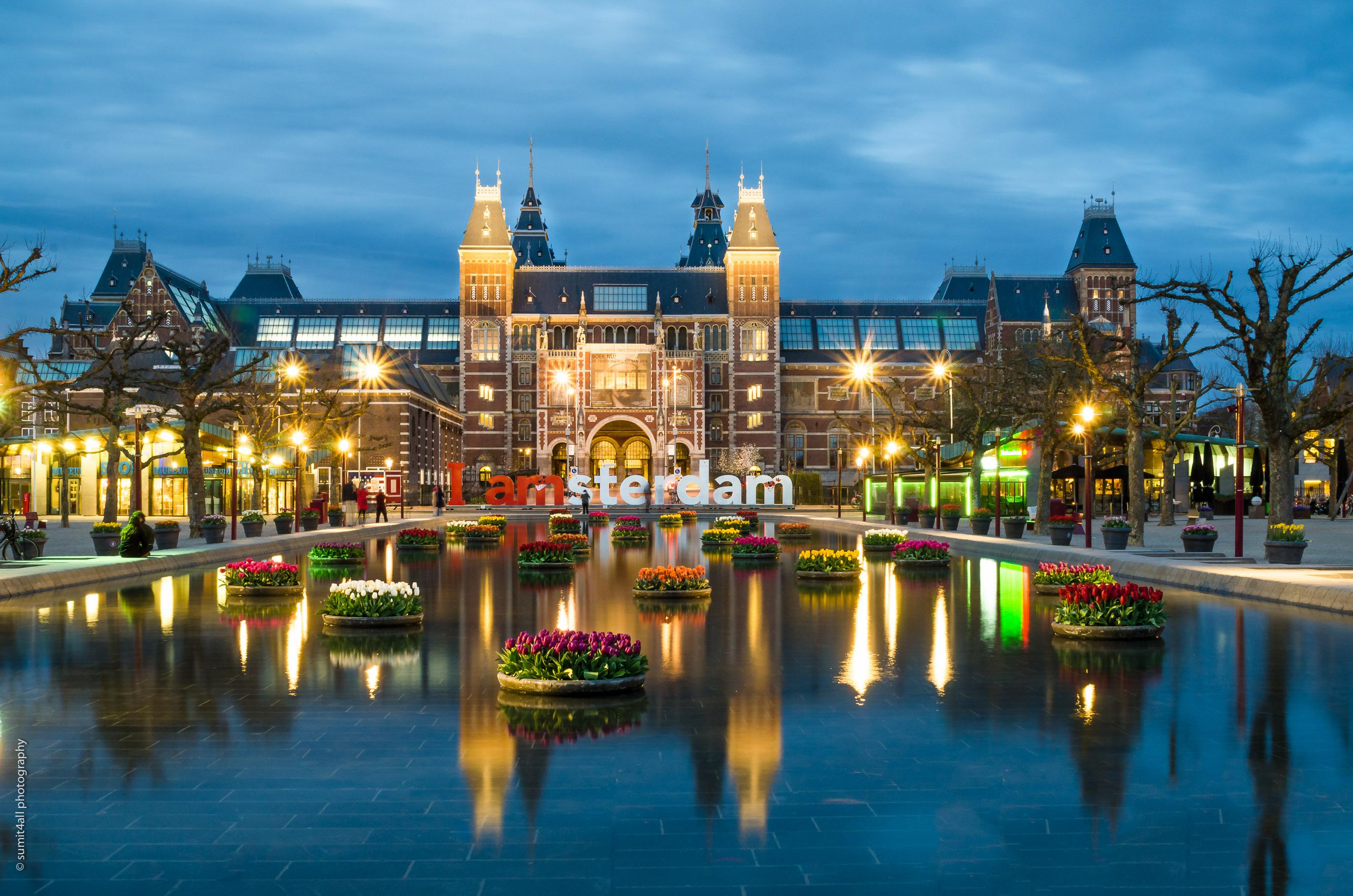 Tulips in front of the Rijksmuseum