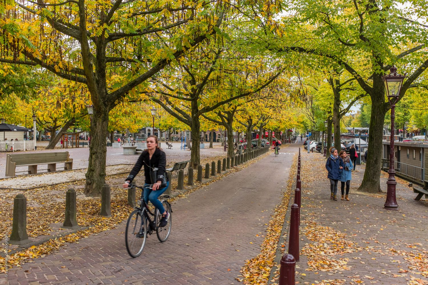 Biking in Amsterdam during Fall