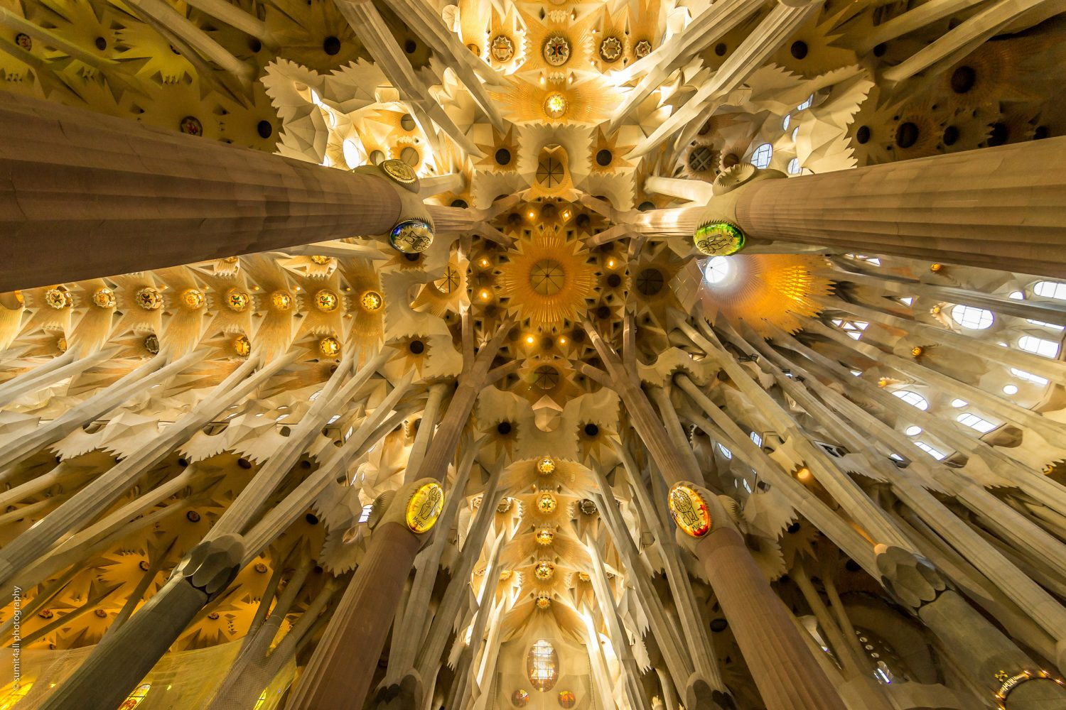 The inside of the Sagrada Familia with the remarkable roof in Barcelona Spain