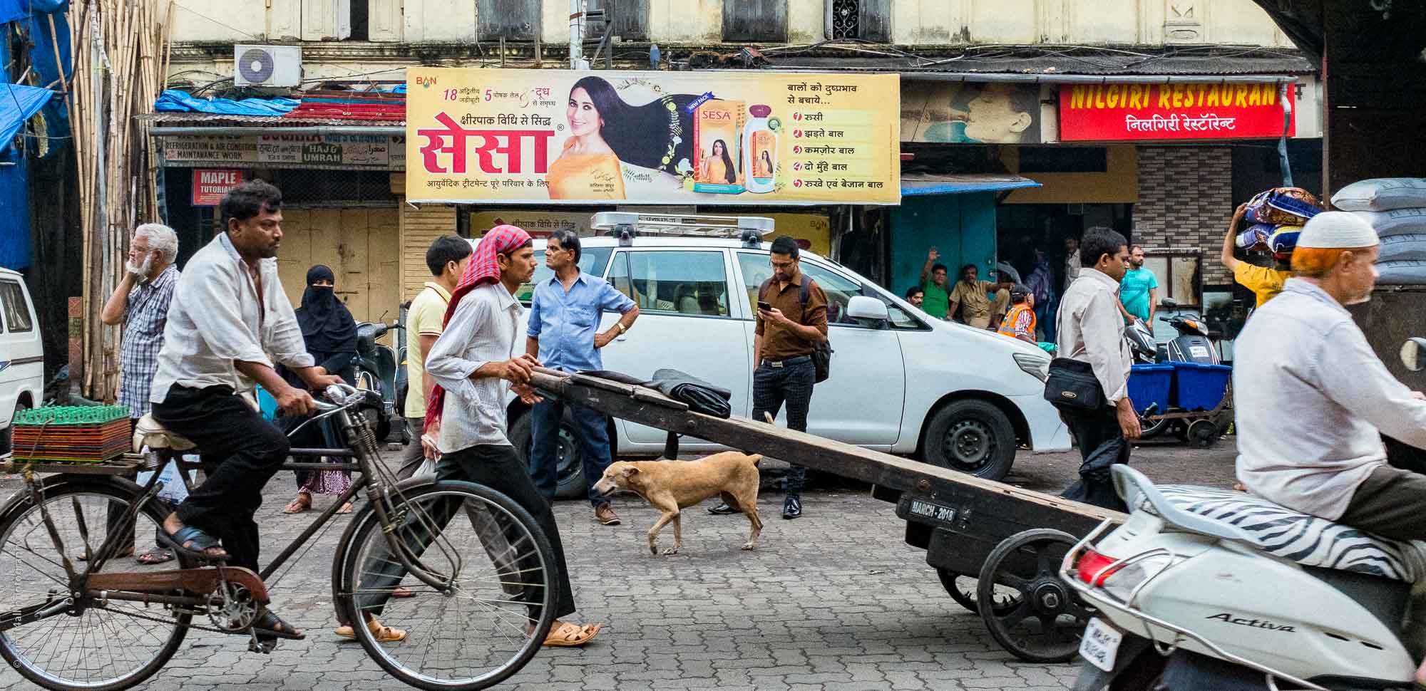 Chaos on the Street, Mumbai
